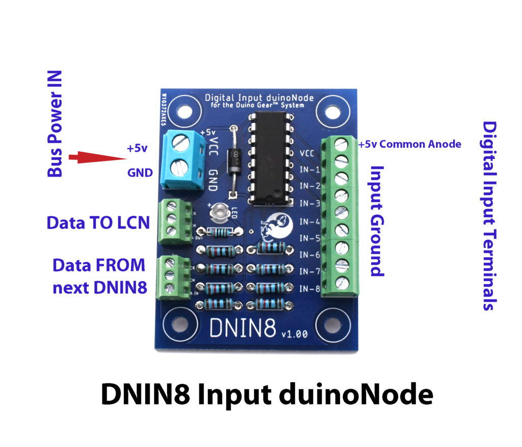 DNIN8 COnnections